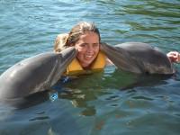 Nado con delfines en Cienfuegos